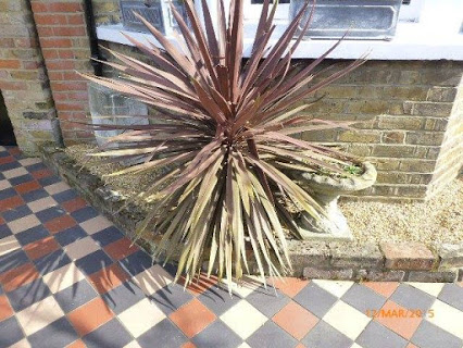 Our work takes us to many different styles of homes. Look at this gorgeous detail outside a house in Esher!