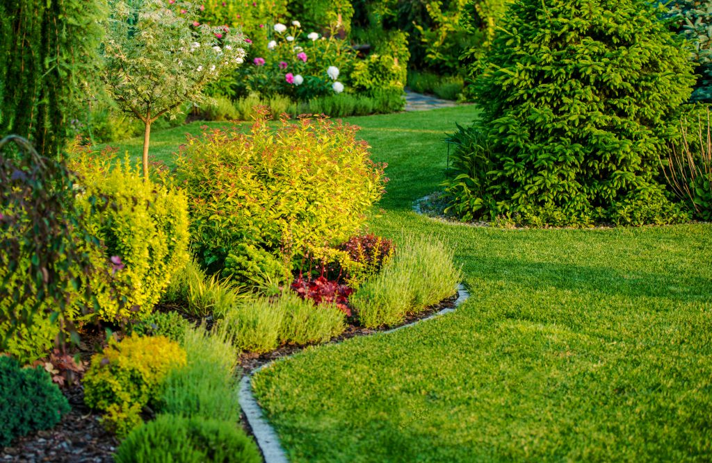Gardens add value to your home if they are well-maintained