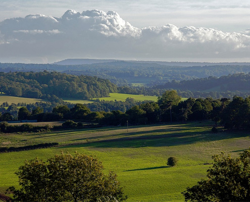 The beautiful Surrey hills